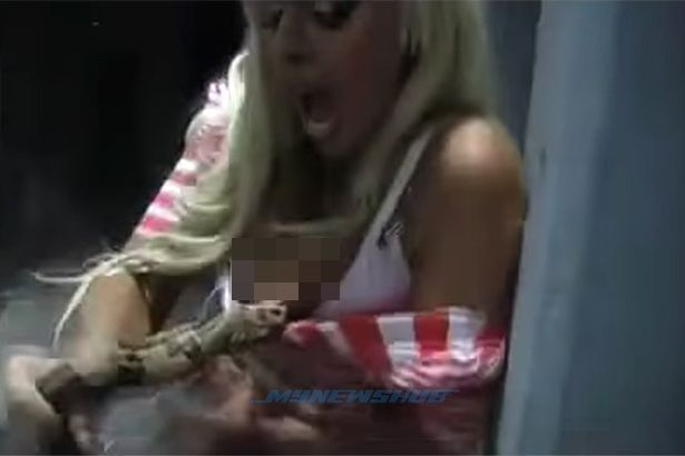 Video ular mati keracunan silikon akibat gigit payudara palsu model Israel   SEEKOR ular jenis boa mati akibat keracunan silikon selepas mengigit payudara palsu seorang model warga Israel.Video yang memaparkan model bernama Orit Fox digigit ular berkenaan malah tersebar luas menerusi internet.  Video ular mati keracunan silikon akibat gigit payudara palsu model Israel  Menerusi rakaman itu Fox yang berpakaian seksi sehingga menampakkan sebahagian payudaranya cuba beraksi ghairah dengan…
