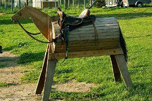 Reiterhof Viervitz - Reiten - Kutschfahrten - Gesundheitssport - Angebote für Kinder - Urlaub wo Rügen am Schönsten ist