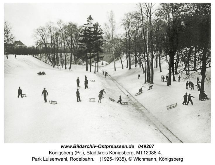 Königsberg, Park Luisenwahl, Rodelbahn