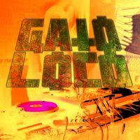 Gato Loco - Senses Arena//Ibagué 04/04/2015 - Vinyl Set by Gato Loco Hellfest on SoundCloud