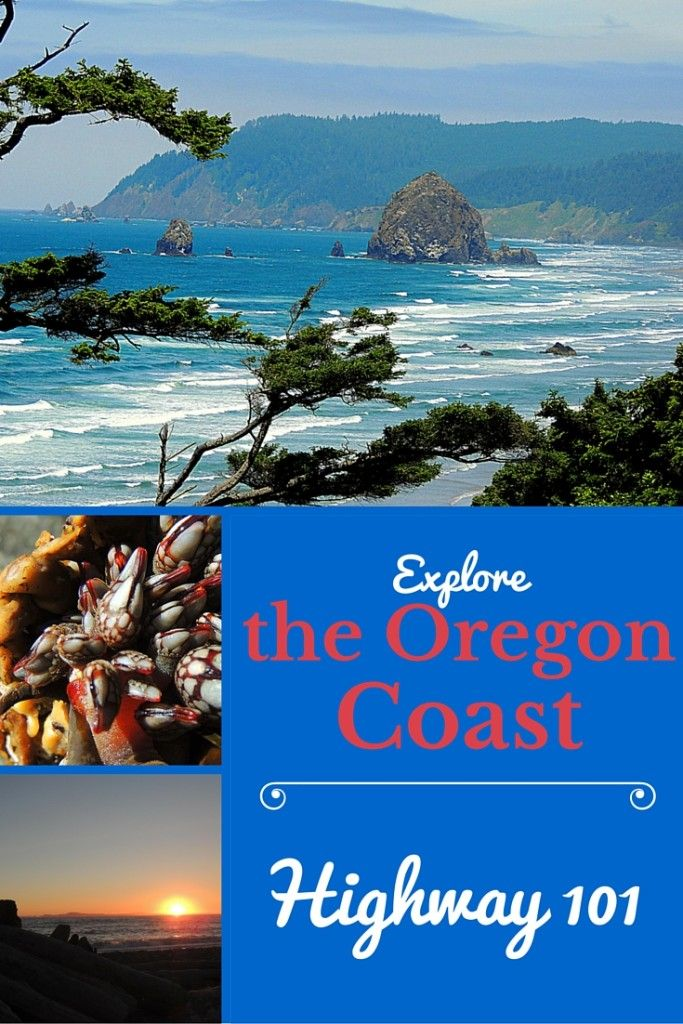 Best Places To Eat Dinner In Cannon Beach