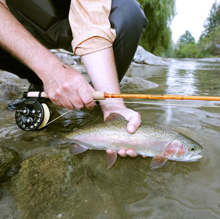 10 best images about fly fishing on pinterest trout for Fly fishing techniques
