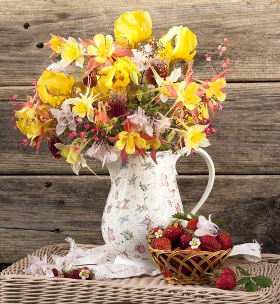 Цветы : 2058