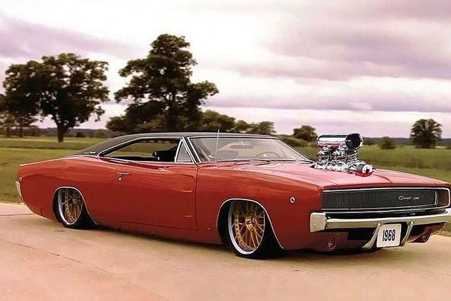 Low, chopped, and blown charger