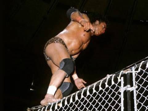 """"""" [Jimmy] Snuka is regarded by many as the pioneer of high-flying offense because of his Superfly Splash from the top turnbuckle. His dive off the top of the steel cage onto Don Muraco at Madison Square Garden as hundreds of flash bulbs went off will forever live as one of the most memorable moments in WWE history."""" –WWE press release, on the death of Jimmy Snuka (1/15/17)"""