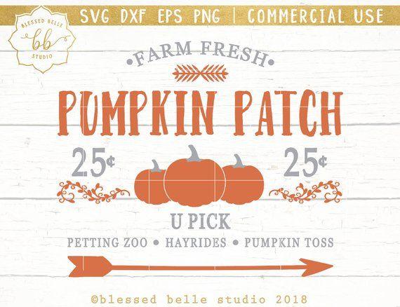 45+ Pumpkin Patch Svg Bundle In Svg/Dxf/Png/Jpg/Eps Crafter Files