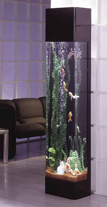 Fish aquarium, this will be my next tank!! I hope!! After i show my husband and…