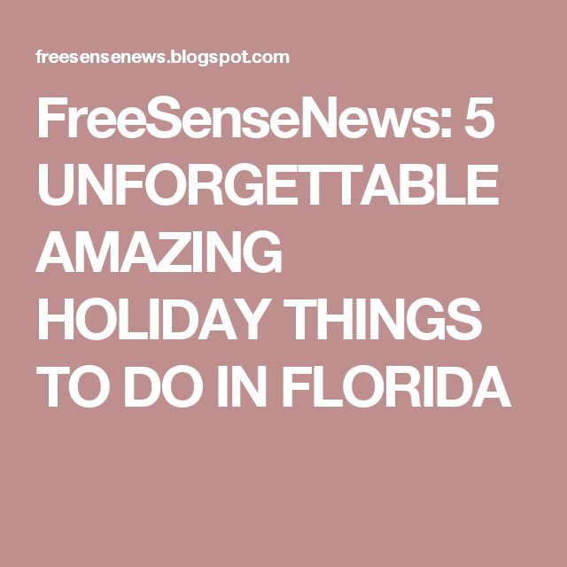 FreeSenseNews: 5 UNFORGETTABLE AMAZING HOLIDAY THINGS TO DO IN FLORIDA