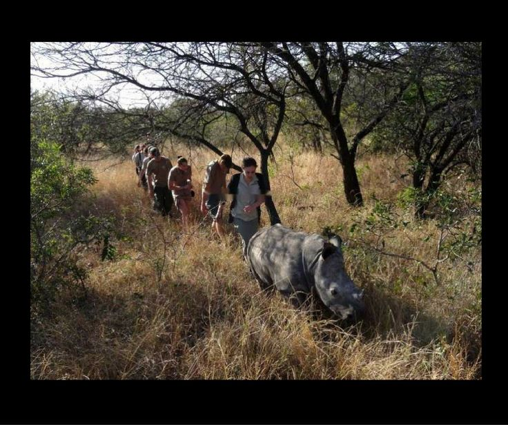 What do you think? a Morning walkabout with a baby Rhino? THIS too can be you!! Just go on our Website www.heartbeatsofafrica.com & choose the project that you would like to support!!