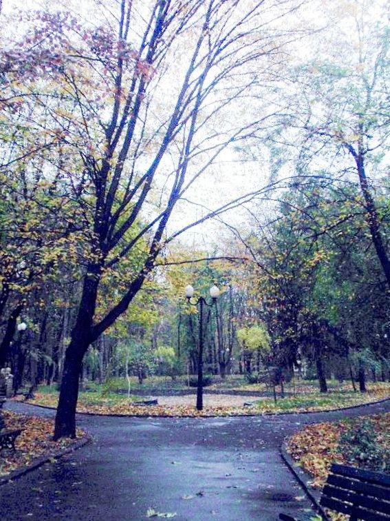 Rain - Autumn - Iasi