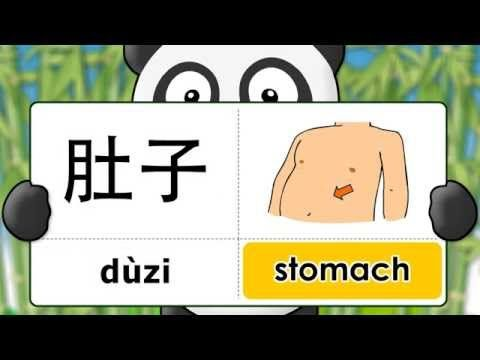 Learn Chinese in 3 easy steps: Body - shēntǐ - 身体 English - Pinyin Chinese Characters - YouTube