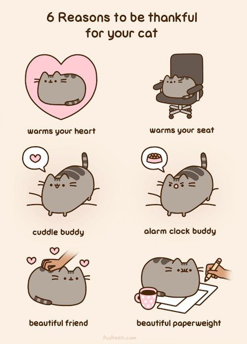 6 Reasons to be thanksful for your cat ~ Happy Thanksgiving (2015) from Pusheen the Cat [animated]