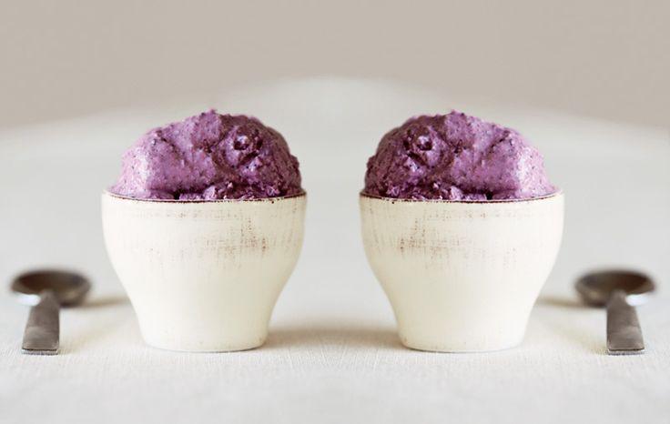 Blueberry Coconut Milk Ice Cream. SCD friendly.
