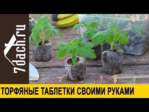 Торфяные таблетки своими руками - 7 дач - YouTube