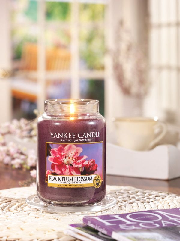 Black Plum Blossom Den lockande sötman av ljuvligt blommande svarta plommon med inslag av vit mysk och vanilj. #YankeeCandlen #BlackPlumBlossom #Frukt #Blomning
