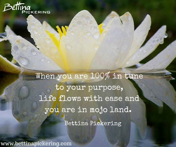 When you are 100% in tune to your purpose, life flows with ease and you are in mojo land. - Bettina Pickering #dialaguru #purpose