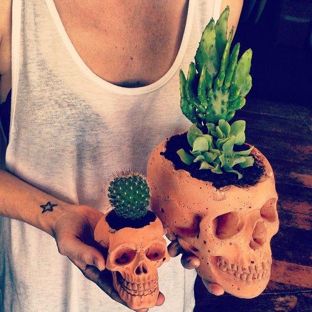 Molan las macetas-calavera, y molan los cactus, para las personas que como yo, no son de plantas.
