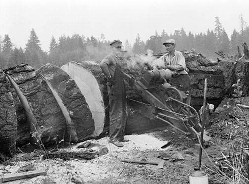 1792 Best Logging Images On Pinterest Antique Photos