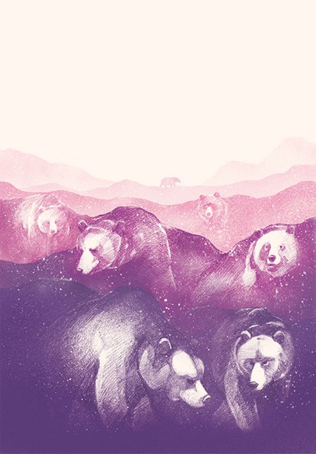 Daniel Teixeira #illustration #bear