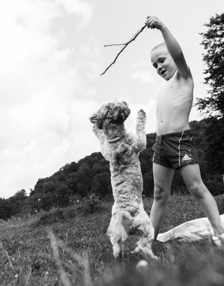 Caesar and the dog by Cîrstea Ionuţ Eduard on 500px