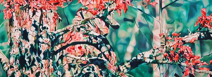 Камуфляжное искусство: оптические иллюзии Пии Дене