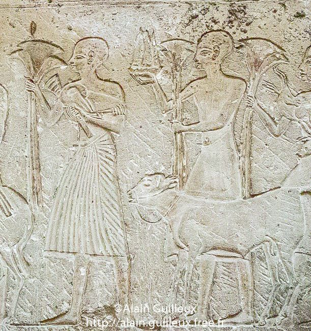 Detail. | Egypt, Cairo, Egyptian Museum, relief of the goldsmith Amenemonet, end of Dynasty 18, Saqqara : Offering bringers and cattle. 17.6.25.1, 18th dynasty, Amenemonet, Ancient Egyptian Art, Ancient Egyptian Religion, Animal, Art, Caire, Cairo, Color Image, Cultural heritage, Dynasty 18, EMC, Egypt, Egyptian Monument, Egyptian Museum Cairo, El Mathaf El Masri, Geography, Human Beings, Inventory number, Kairo, Lower Egypt, Middle East, Musée Egyptien du Caire, New Kingdom, Nile Delta, No…