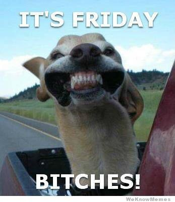 It's Friday BITCHES!!!!!!!!!!!