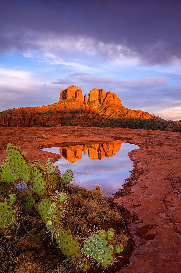 Cathedral Rocks, Sedona, Arizona, USA by Theresa Ditson  I had to race to this location in Sedona after getting off of work a little late the other day in hopes that I might be able to catch a sunset. In particular ...  https://f11news.com/24/07/2017/cathedral-rocks-sedona-arizona-usa-by-theresa-ditson