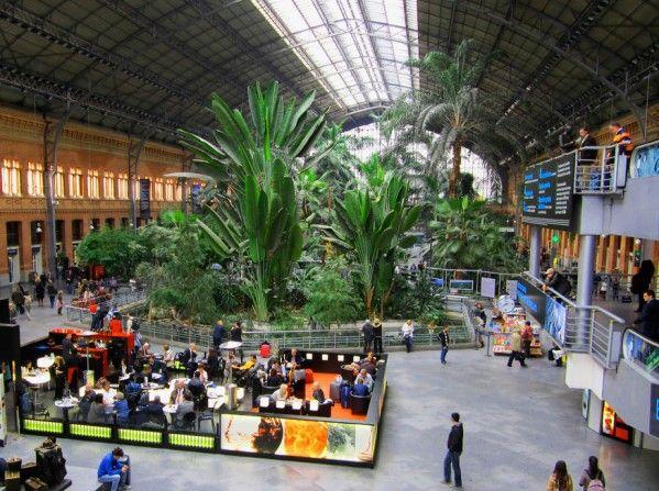 17 best Atocha Station Botanical Garden images on Pinterest | Train ...