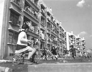 昭和30年(1955) 新宿区都営戸山アパート。