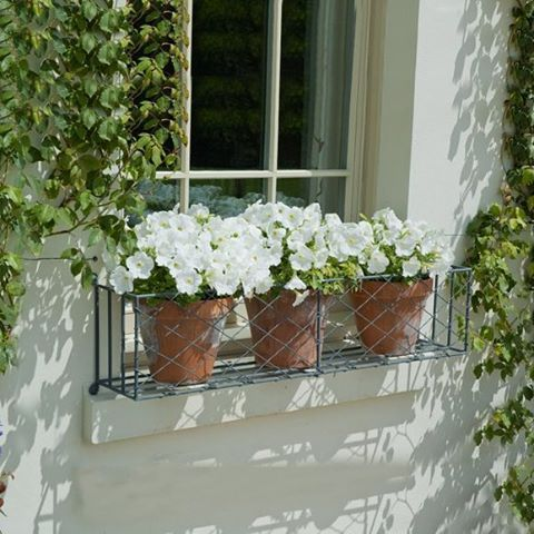 Best 25+ Indoor window boxes ideas on Pinterest | Indoor ...