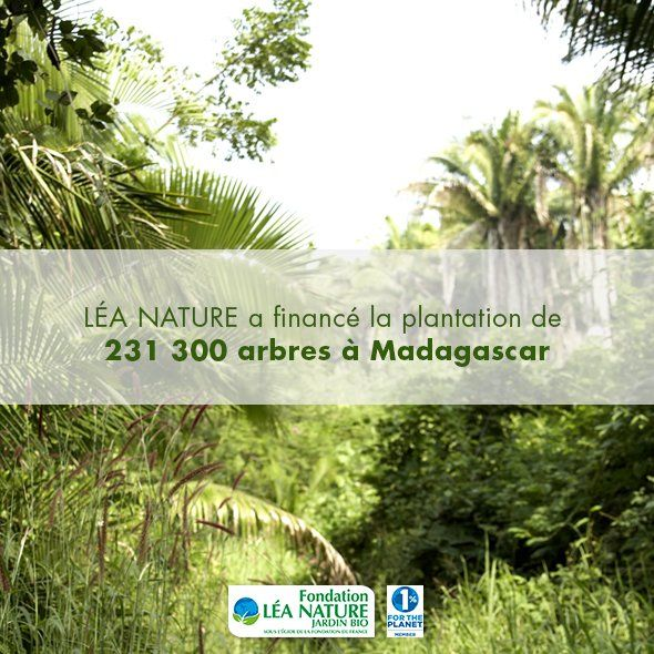 #Reforestation (@LeaNature) | Twitter