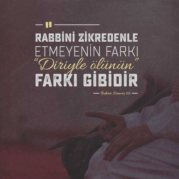 Rabbini zikredenle etmeyenin farkı, diriyle ölünün farkı gibidir. (Buhari, Deavata, 66)  #rabbim #zikir #ölü #diri #fark #hadisler #hadis #islam #ilmisuffa