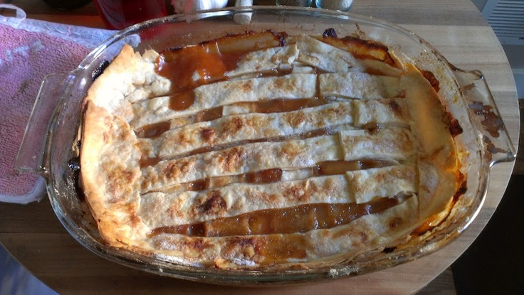 Old fashioned peach cobbler | Hoardermart Down Home Cooking | Pinter ...