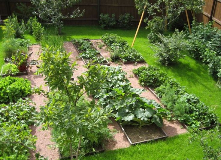 Outdoor Backyard Vegetable Garden The Best Time To Plant In Your Vegetable Garden