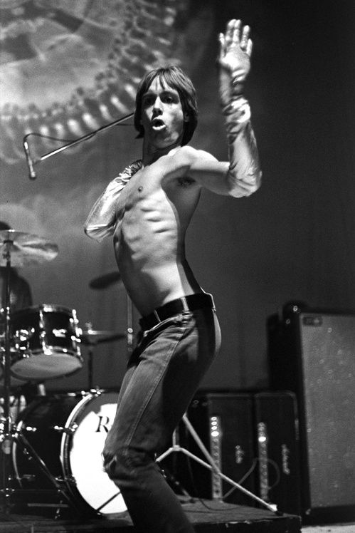 Iggy Pop du groupe Iggy and The Stooges à la Fillmore West de San Fransisco, mai 1970