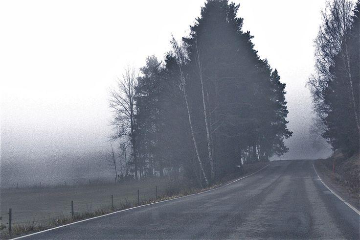 Lanbro arteko errepidea (Road in the mist)
