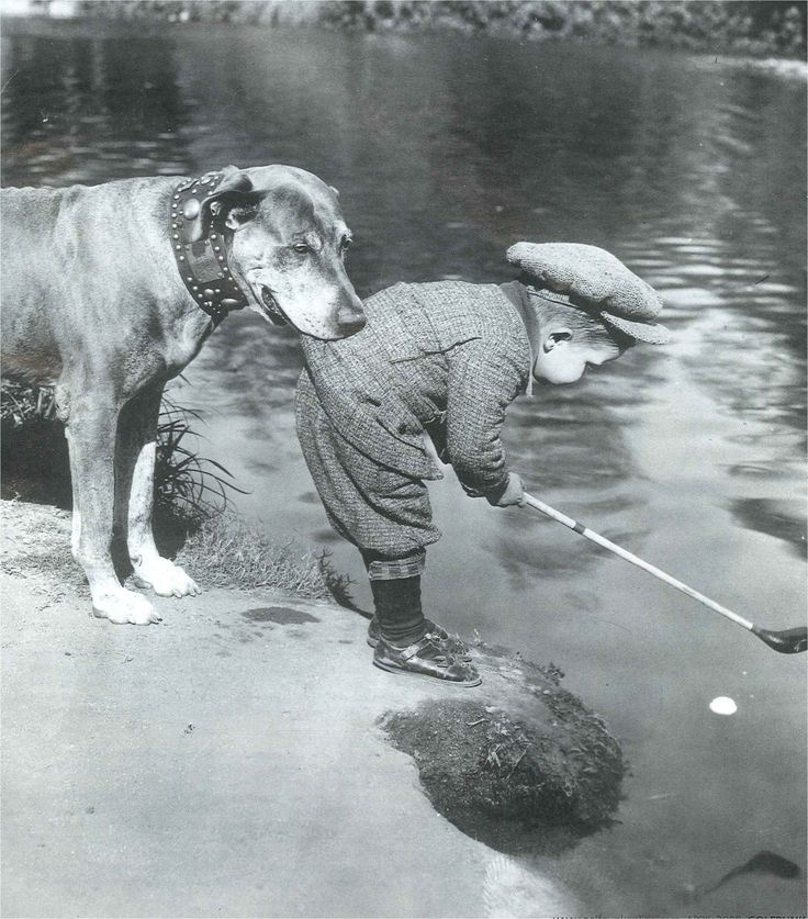 This picture will appeal to people who love a) cute children b) dogs c) golf