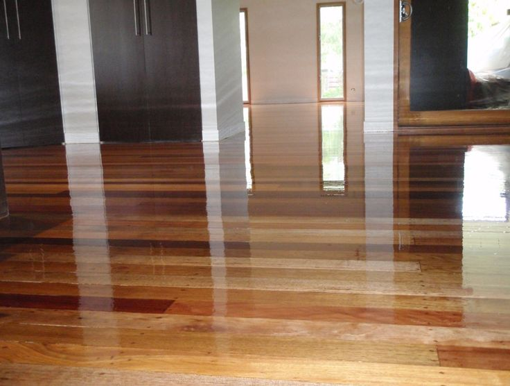 Polished timber floors - Which gloss level should I choose? Your choice will impact the looks of your floor and how often your going to have to clean it. Make the right choice with advice from a pro right here: http://www.economyfloorsanding.com.au/polished-floors/polished-floors-guide/