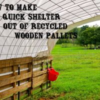How to Make a Quick Shelter out of Pallets - The Free Range Life
