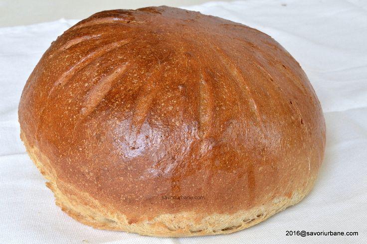 Paine de casa cu faina alba si neagra. O paine rotunda, moale, semi-alba, pufoasa dar consistenta, perfecta pentru o mica gustare. Eu am facut-o pentru o