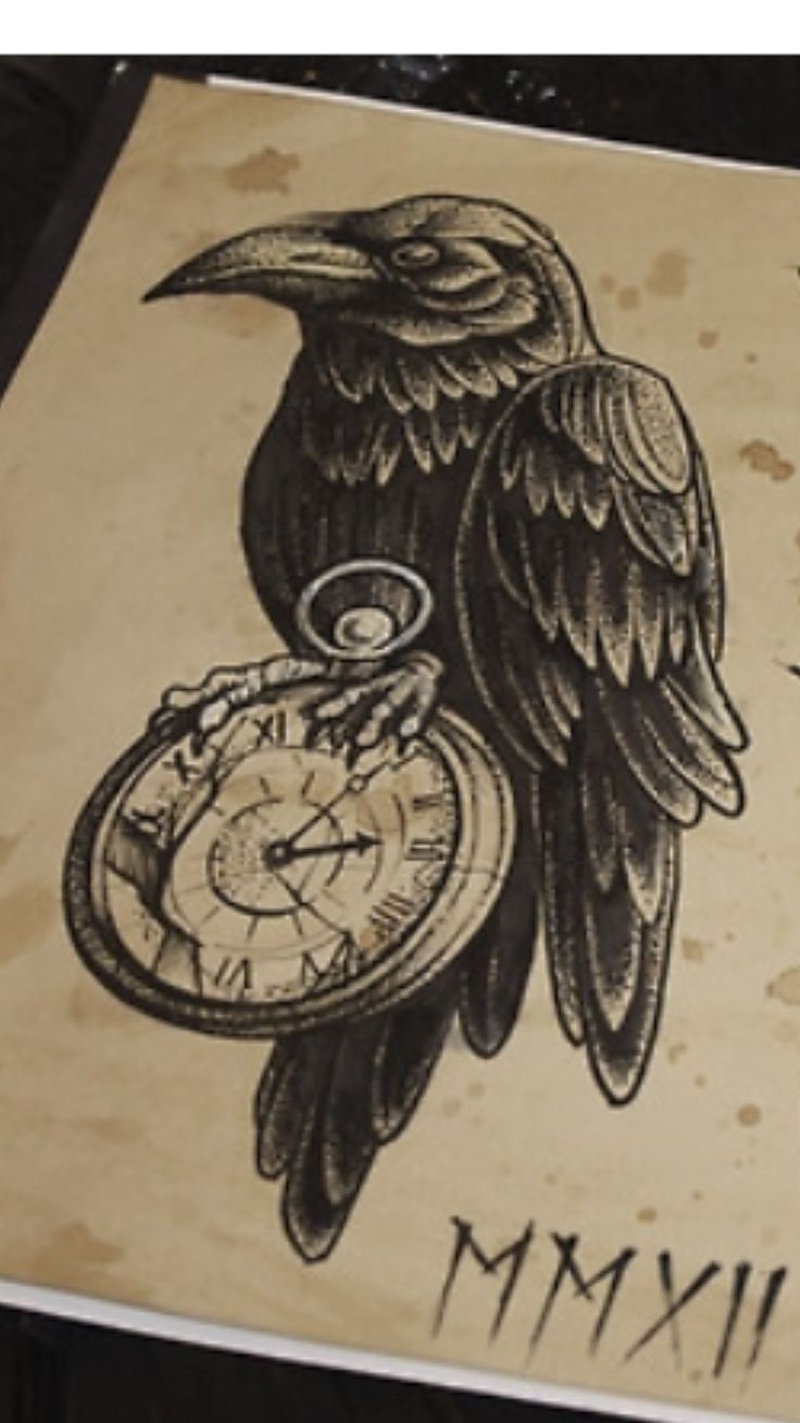 Raven, Symbolizes strength, recovery, freedom, discovery, moving forward                                                                                                                                                                                 More