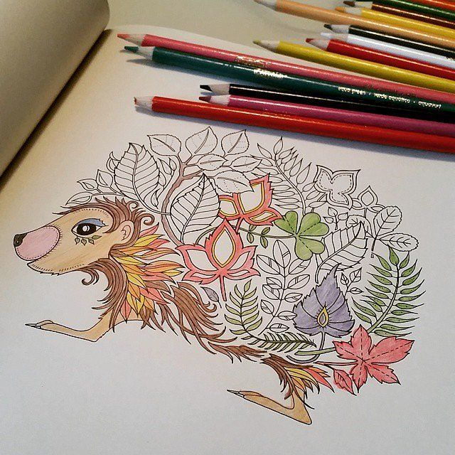 41 Best Art With Colored Pencils Images On Pinterest