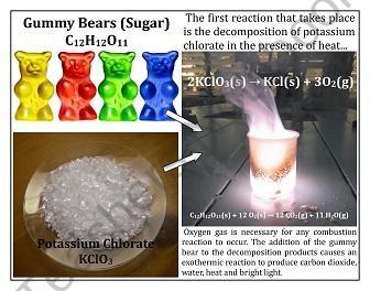 Reaction: Tortured Gummy Bear product from MrTerrysScience on TeachersNotebook.com