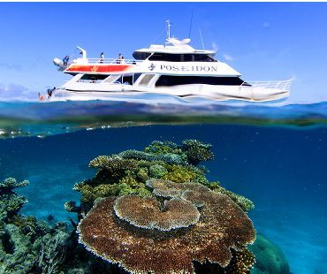 Snorkelling Diving Great Barrier Reef Port Douglas Cairns Australia Poseidon Cruises PADI Diving