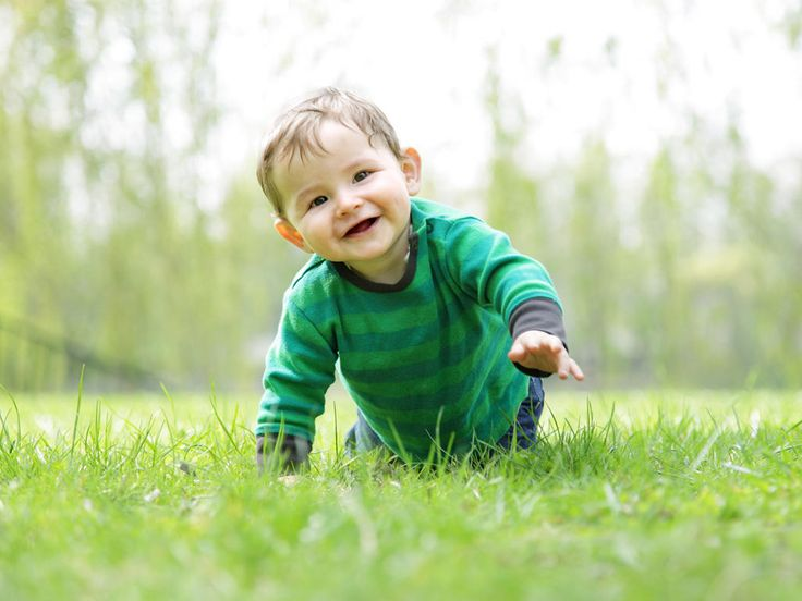 What's the difference between fine and gross motor skills?