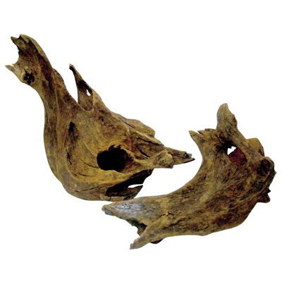 Malaysian Driftwood, Freshwater Aquarium Driftwood for Sale Online | PetSolutions