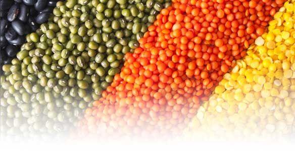 Schildklier-dieet – Voeding die je trage schildklier stimuleert… - Salusi.nl