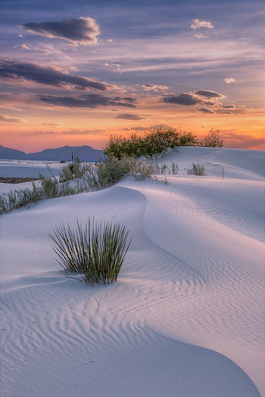White Sands National Monument, Alamogordo, New Mexico, USA