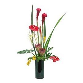 Send Get Well Soon Flowers Online